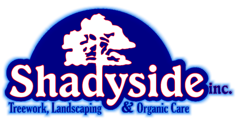 Shadyside Landscaping - Treework Landscaping and Organic Care
